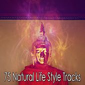 75 Natural Life Style Tracks von Entspannungsmusik