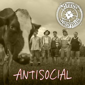 Antisocial (English Version) de Steve 'n' Seagulls