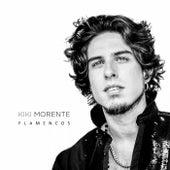 Flamencos de Kiki Morente