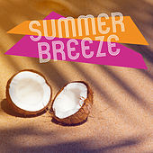 Summer Breeze – Holiday Chill Out, Pure Mind, Beach Party, Ibiza Summertime, Chill Paradise, Relaxing Music von Ibiza Chill Out