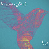 Fly by The Hummingbird