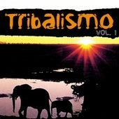 Tribalismo Vol. 1 de Various Artists