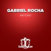 Mr Toad by Gabriel Rocha