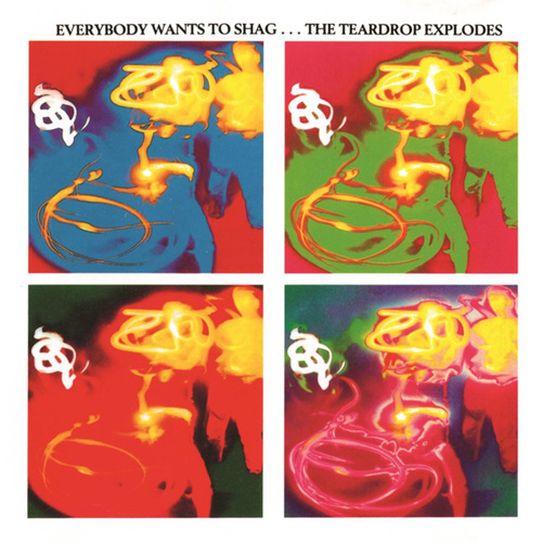 Everybody Wants To Shag... The Teardrop Explodes by The Teardrop Explodes