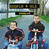 Dommage (Acoustic) by Bigflo & Oli