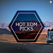 Hot EDM Picks by Various Artists