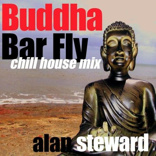 Buddha Bar Fly (Chill House Mix) by Alan Steward