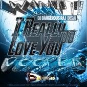 I Really Do Love You (I Want It Deeper) de DJ Dangerous Raj Desai