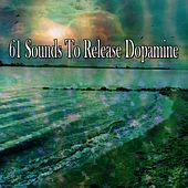 61 Sounds To Release Dopamine von Massage Therapy Music
