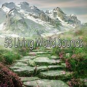 58 Living World Sounds de Nature Sounds Artists