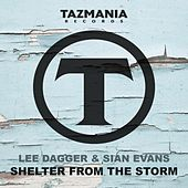 Shelter From The Storm by Lee Dagger