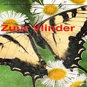 Zuur Vlinder de Kevin Ferguson
