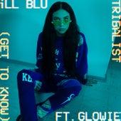 Tribalist (Get To Know) de Ill Blu