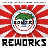 Red Bull Elektropedia presents Bonzai Reworks by Various Artists