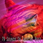 79 Sounds To Inspire Rest de Ocean Sounds Collection (1)