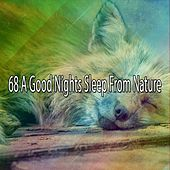 68 A Good Nights Sleep From Nature von Rockabye Lullaby