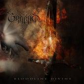 Bloodline Divine von Grabak