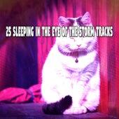 25 Sleeping In The Eye Of The Storm Tracks de Thunderstorm Sleep