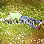 57 Sounds For Soothing Night Rest de White Noise Babies