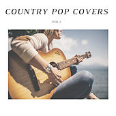 Here by Country Pop Covers