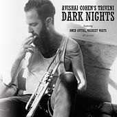 Dark Nights by Avishai Cohen