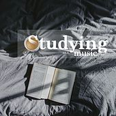 Studying - Concentration Music (New Age Piano Melodies and Relaxing Music), Nature Sounds by Studying Music