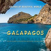 Ocean Waves: Galapagos (Nature Sounds for Relaxation, Meditation, Healing & Sleep) by Sounds of Beautiful World
