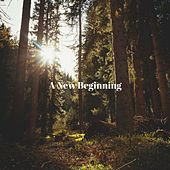 A New Beginning by Hero