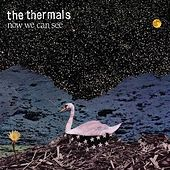 Now We Can See by The Thermals