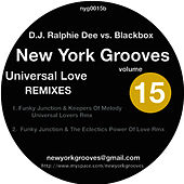 Universal Love -  Funky Junction Keepers Of The Melody  Remix von Black Box