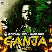 Ganja (MOTA) de Shabba Ranks