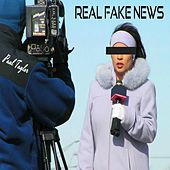 Real Fake News by Paul Taylor