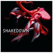 Spellbound von Shakedown