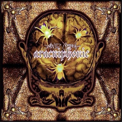 Aracniphonic by David Correa