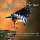 Nature Symphonies: Vogelkonzert by Dave Miller