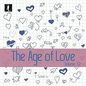 The Age of Love, Vol. 12 by Various Artists