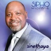 Sinekhaya by Sipho Makhabane