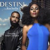 Destini (feat. Joseph Covington) by Rochelle