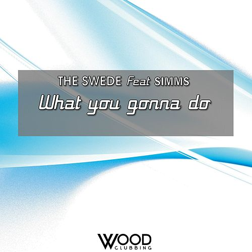 What You Gonna Do (feat. Simms) by The Swede