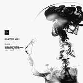 Brln Voice, Vol. 1 - EP by Various Artists