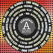 Zimzeleno A Novo by Various Artists