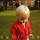 Gwei Där von Harriet