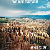 I Can See Clearly Now by Bryon Tosoff