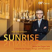 Kay Johannsen: Sunrise by Various Artists
