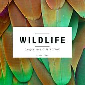 Wildlife - Unique Music Selection, Vol. 14 by Various Artists