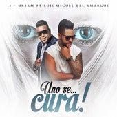 Uno Se Cura (feat. Luis Miguel Del Amargue) de J-Dream