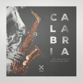 Calabria de Groove Delight