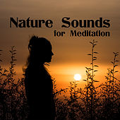 Nature Sounds for Meditation – New Age Music 2017, Yoga & Relaxation, Zen, Mantra, Affirmation for Life, Inner Calmness by Nature Sounds Relaxation: Music for Sleep, Meditation, Massage Therapy, Spa