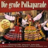 Die große Polkaparade by Various Artists
