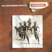 Pamberi! de Bhundu Boys